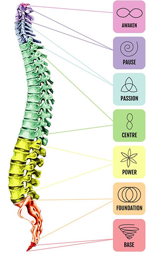 Spinal Flow
